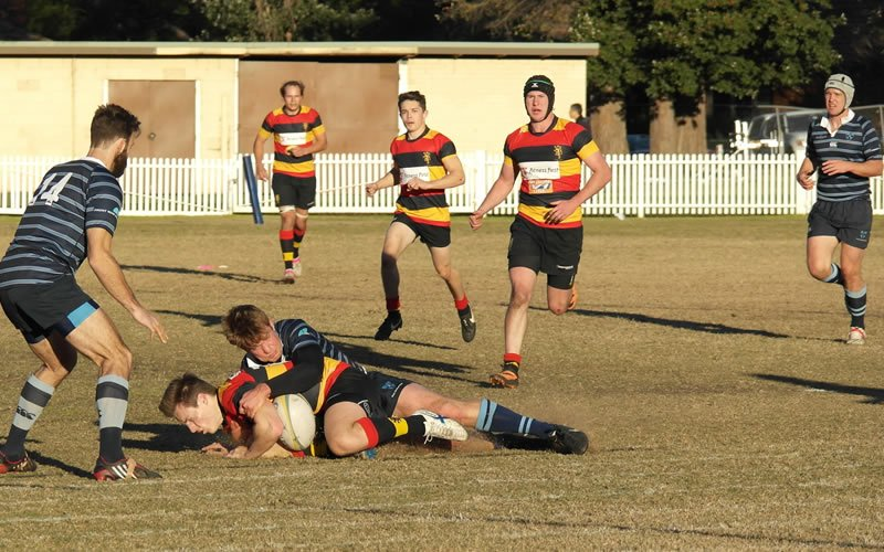 Kings Old Boys' Rugby Union V Hornsby